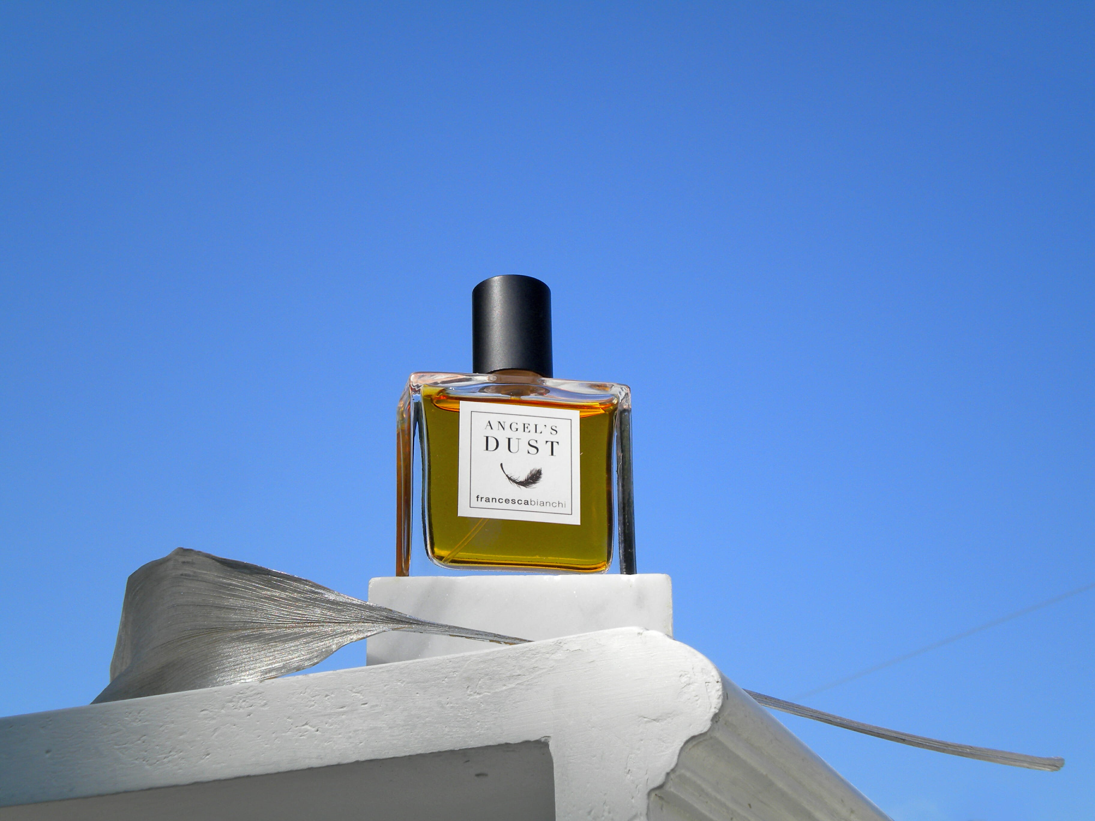Angel's Dust. blue sky and leaf | Francesca Bianchi Perfumes